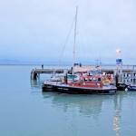 nznelsonboat02